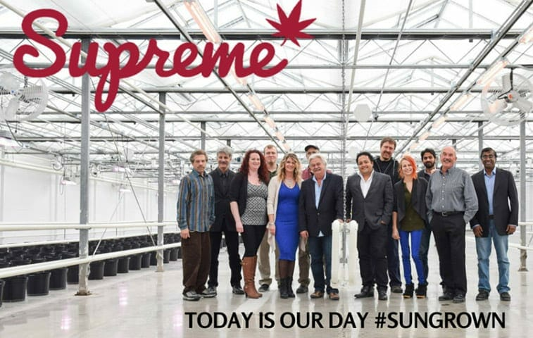 Supreme-Pharma-Team