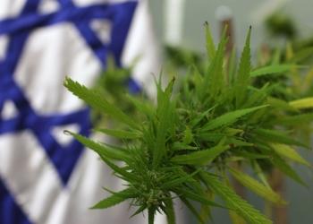 Israel-Pot.jpg
