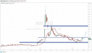 Manganese X (MN.V)
