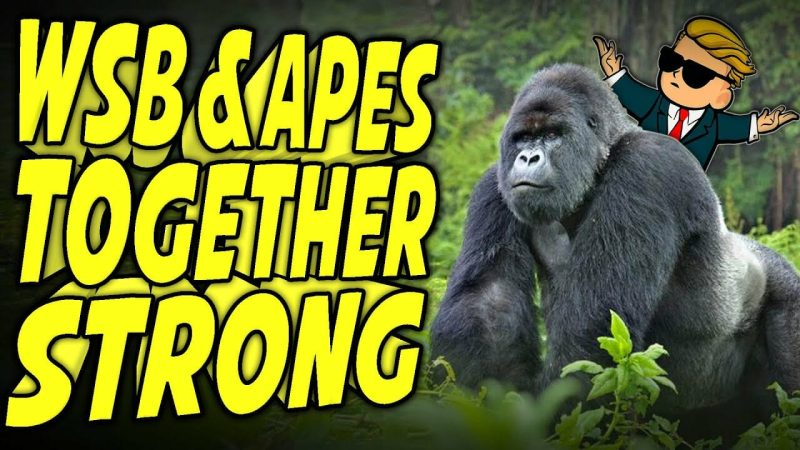 Apes Together Strong: WallStreetBets All-In on Gorillas! - YouTube